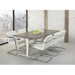 Bureau-tafel TZ 200 x 100